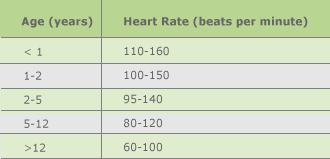 Heart and breathing rate | Human respiration rate |
