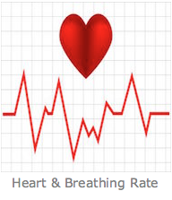 Heart & breathing rate
