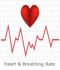Heart & breathing rate